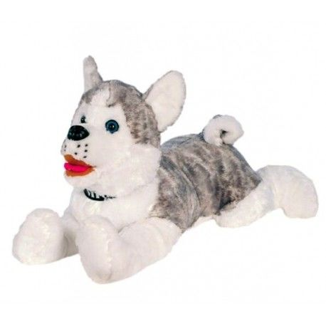 Perro Husky tumbado