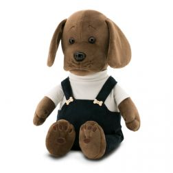 Perrito mascota Puppy