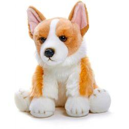 Cachorro perrito Corgi
